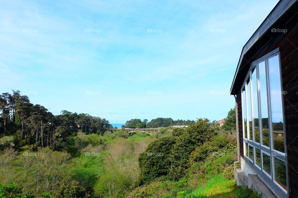 Windows, view and a bridge