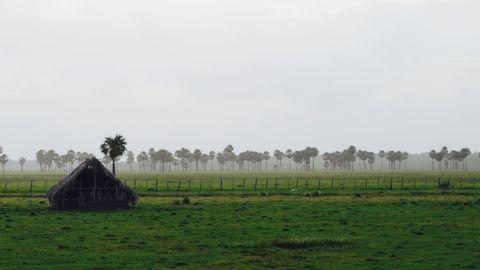 Green and gray landscape valdemira24 Canon SX 50