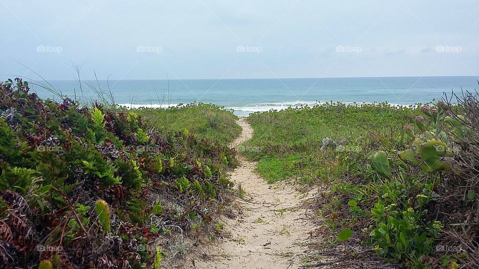 View of path to the beach