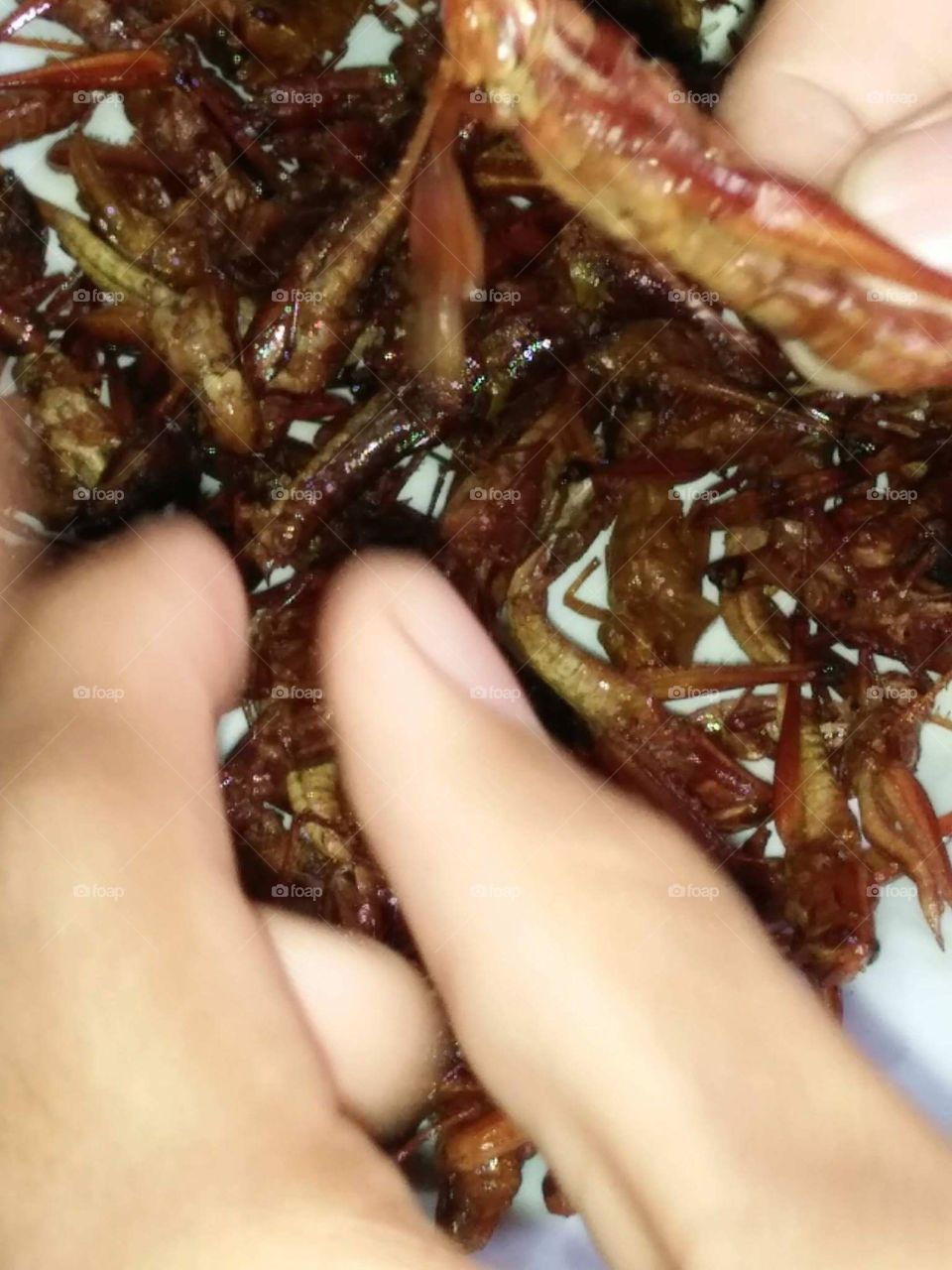 A cook grasshopper  one of other native food of native people of my country!!!!