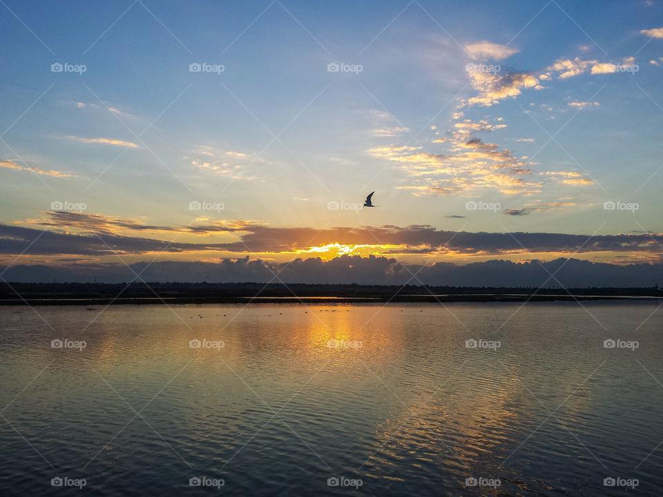 Sunrise at california