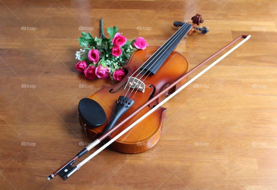 Violin, Violino, Instrument, Music, Love, Romance, Strings, Bow, Flowers, Art