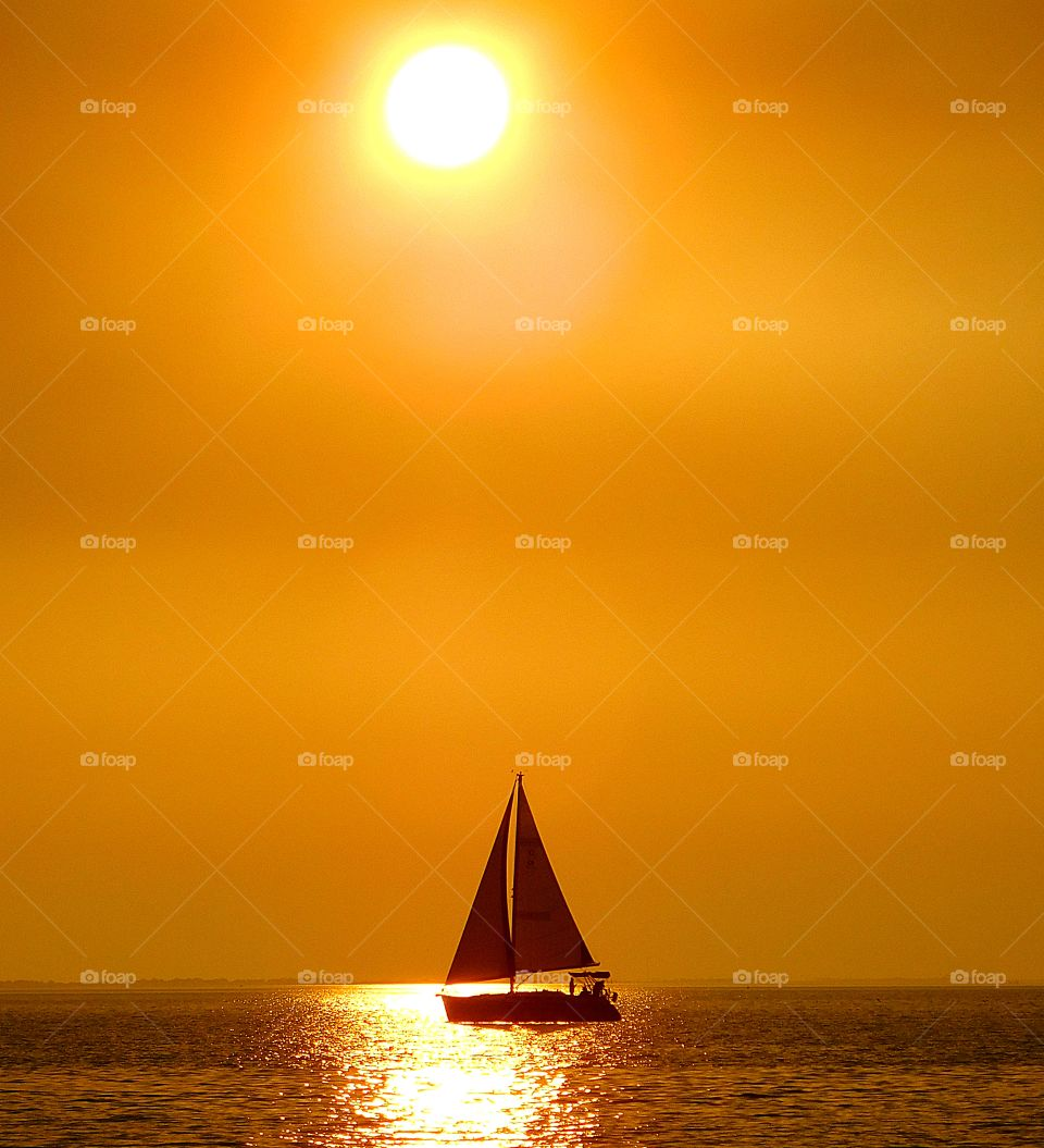 Sailing in the golden sunset. A swift running sailboat maneuvers  its way across the calm waters of the bay during a colorful, golden sunset