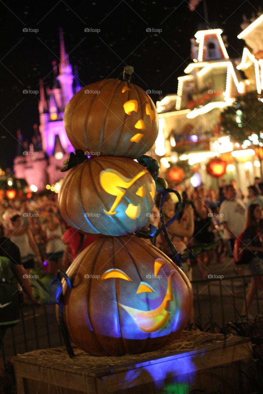Magic kingdom Disney Orlando Florida USA