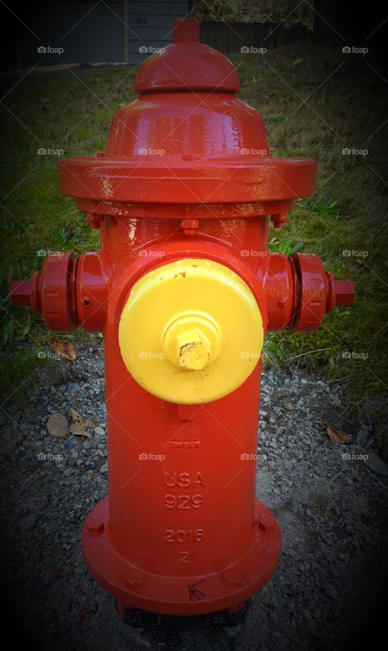 Yellow Fire Hydrant Plug
