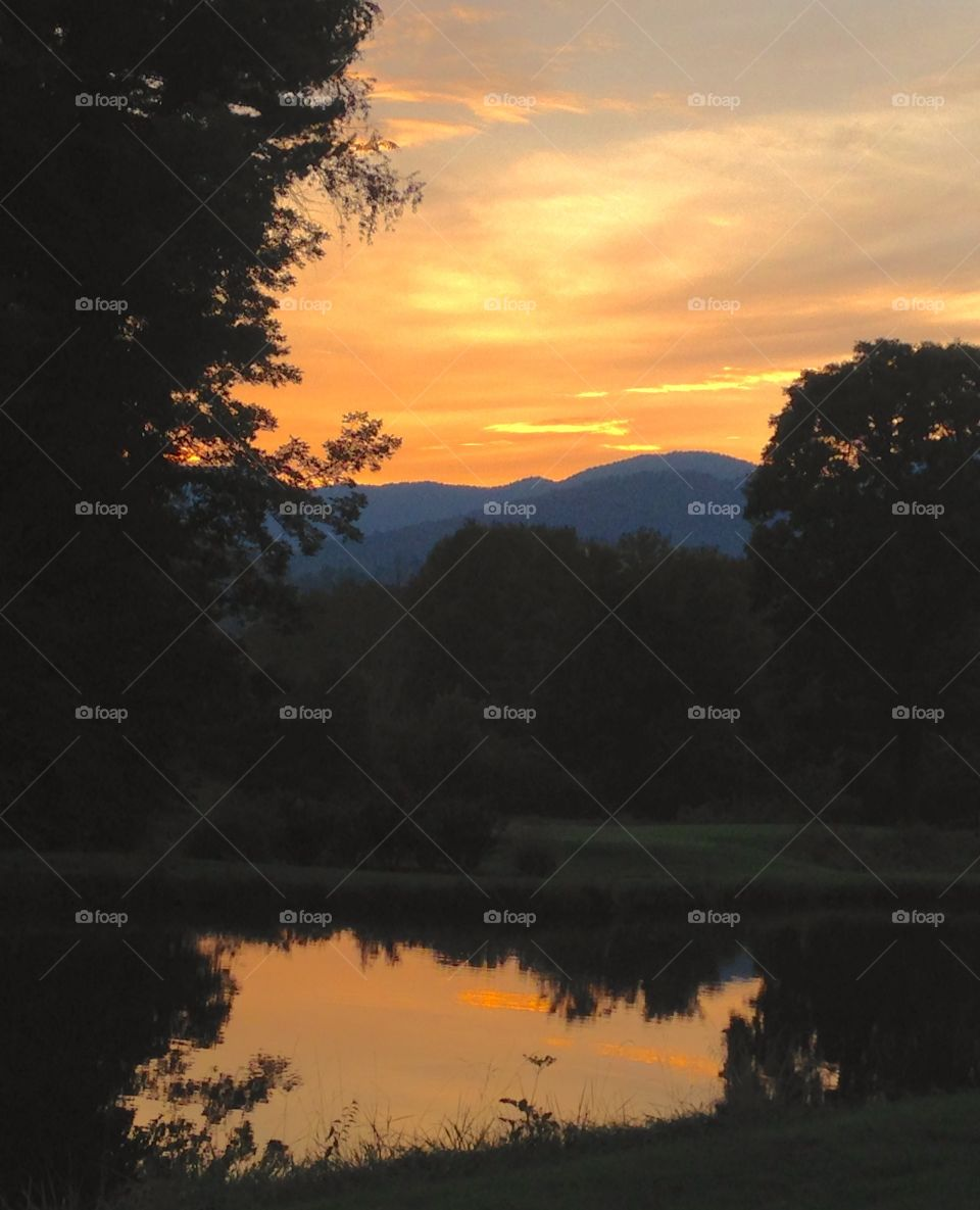 Golden Pond Reflection. An awesome sunset doubled by a pond reflection.