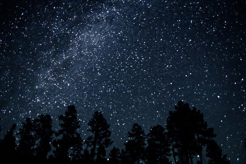 Low angle view of milky way in sky