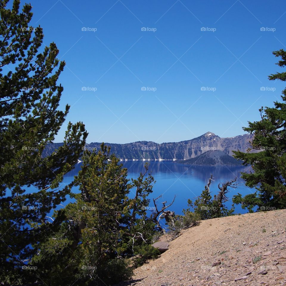 Wizard Island seen through beautiful fir trees at Crater Lake National Park in Southern Oregon on a sunny summer morning.
