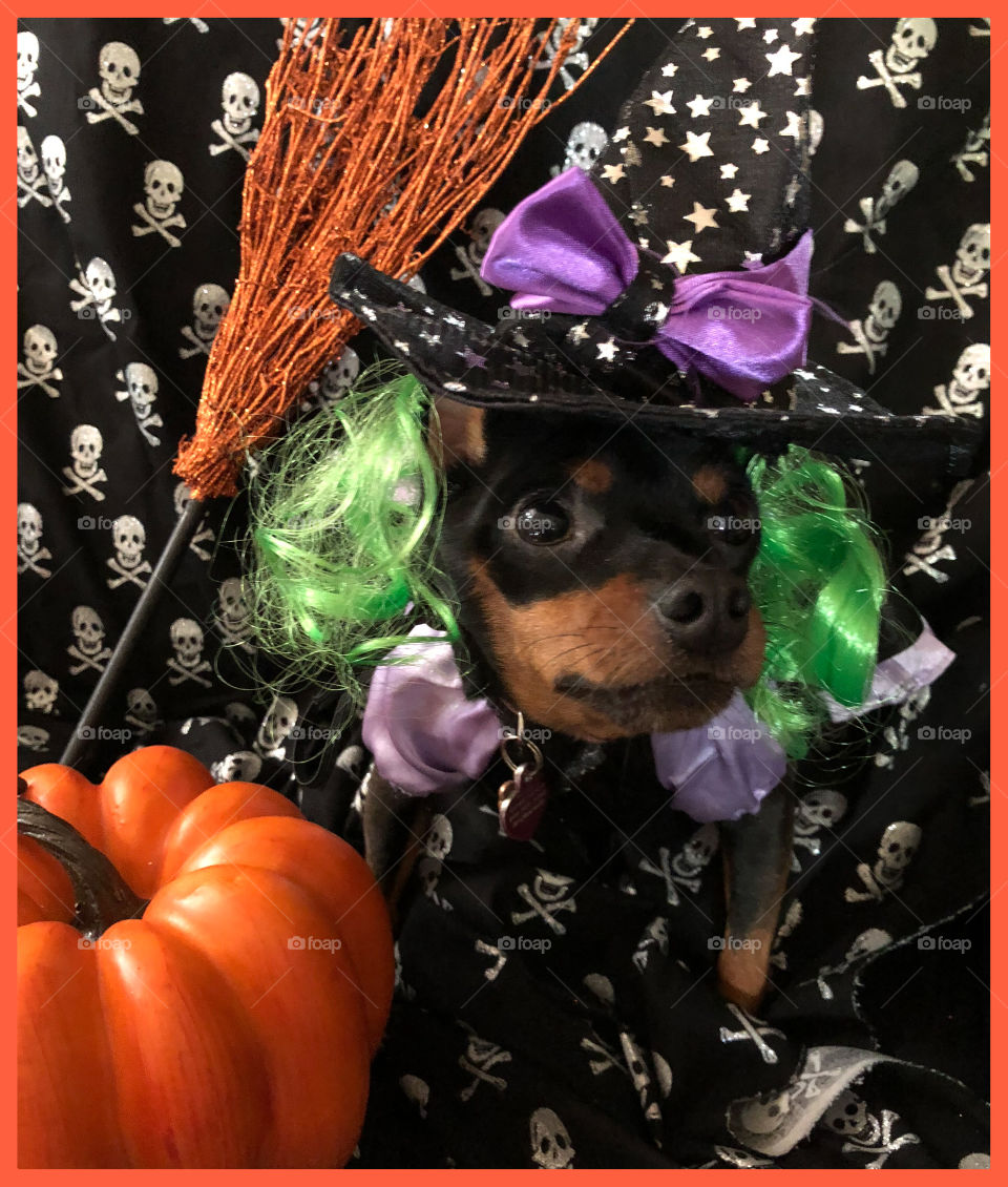 Min pin witch
