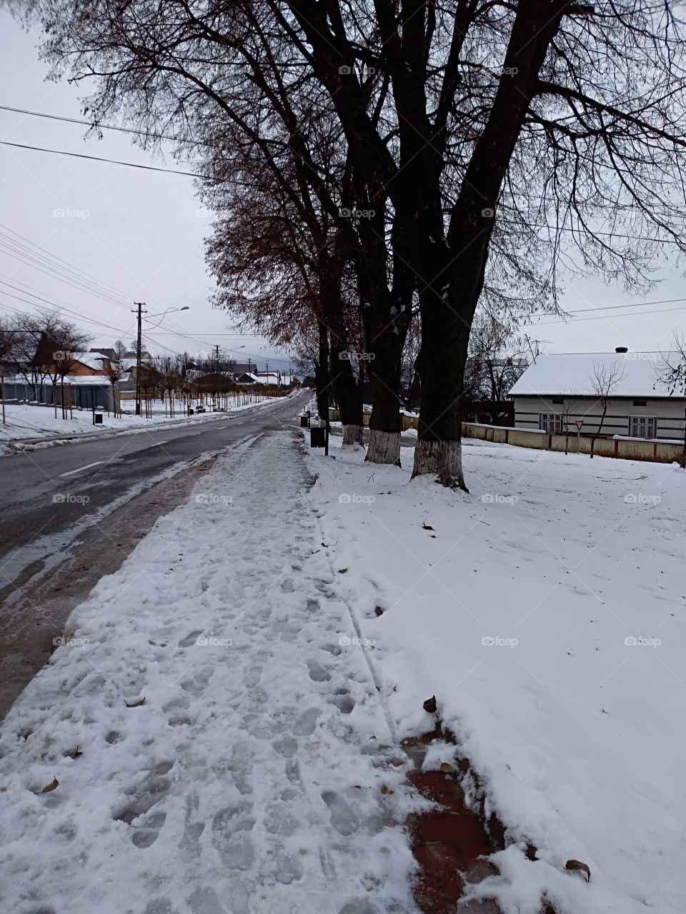 street wiew on December