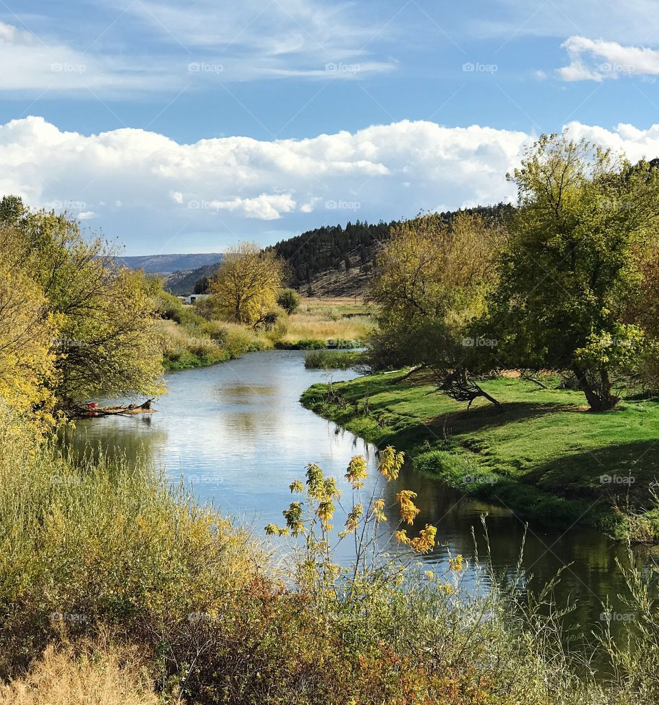 The Crooked River in Central Oregon winds through farmland with trees and bushes on the banks changing to their fall colors on a beautiful day.