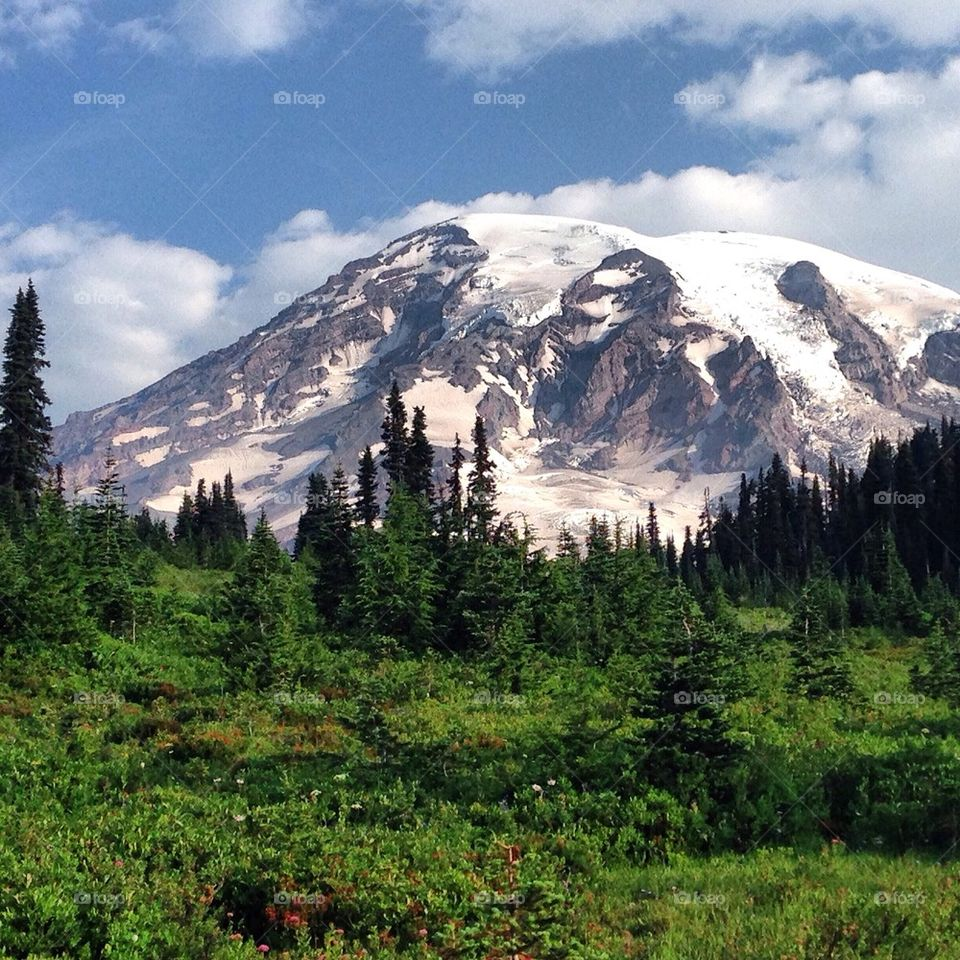 Mt. Rainier covered with snow