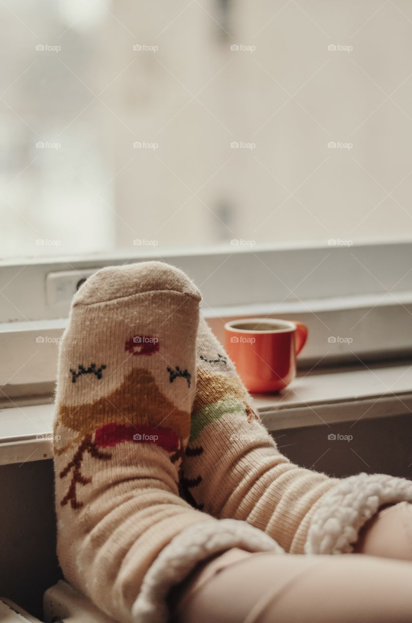 Cozy in winter
