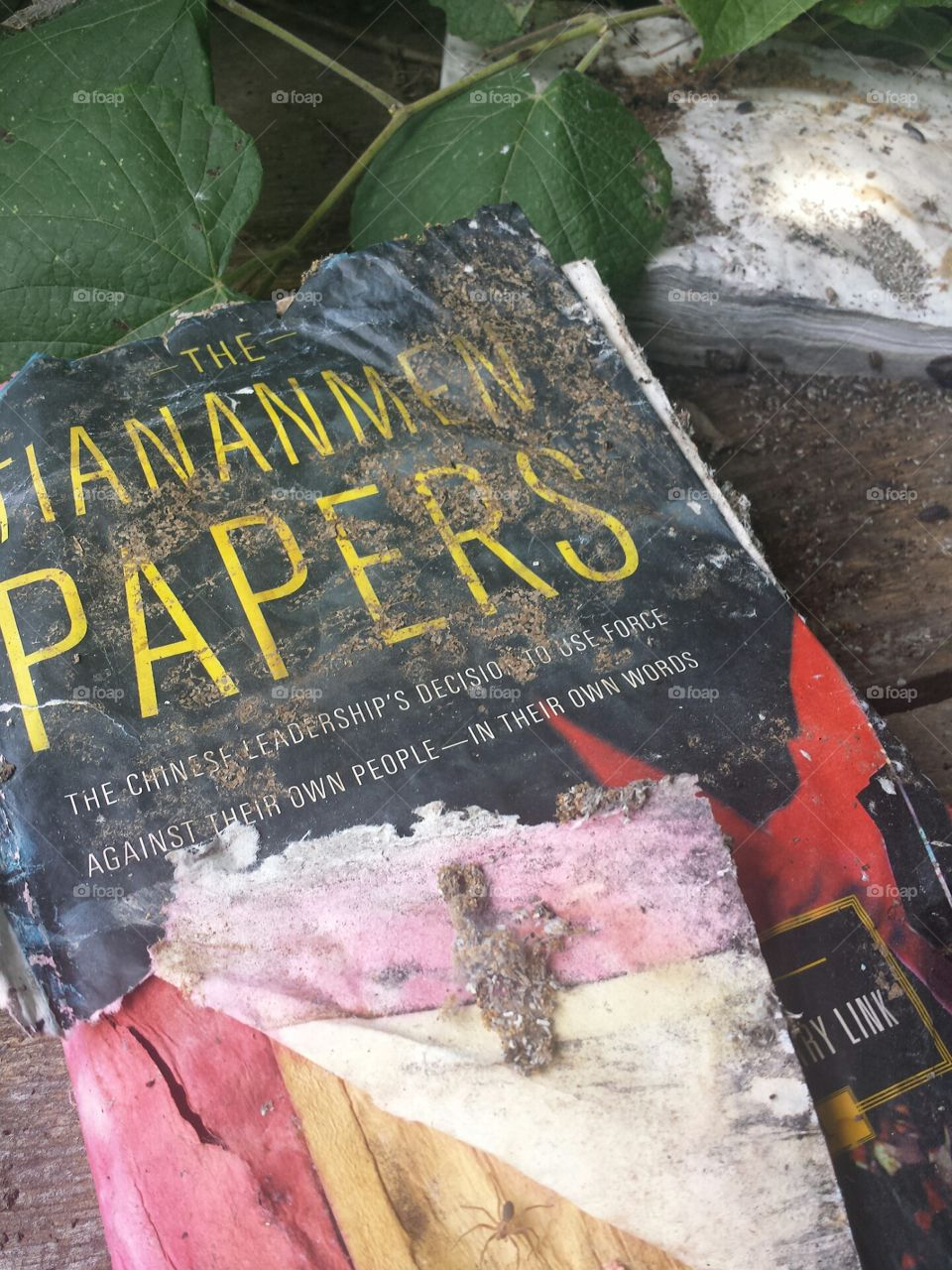 The Tiananmen Papers book