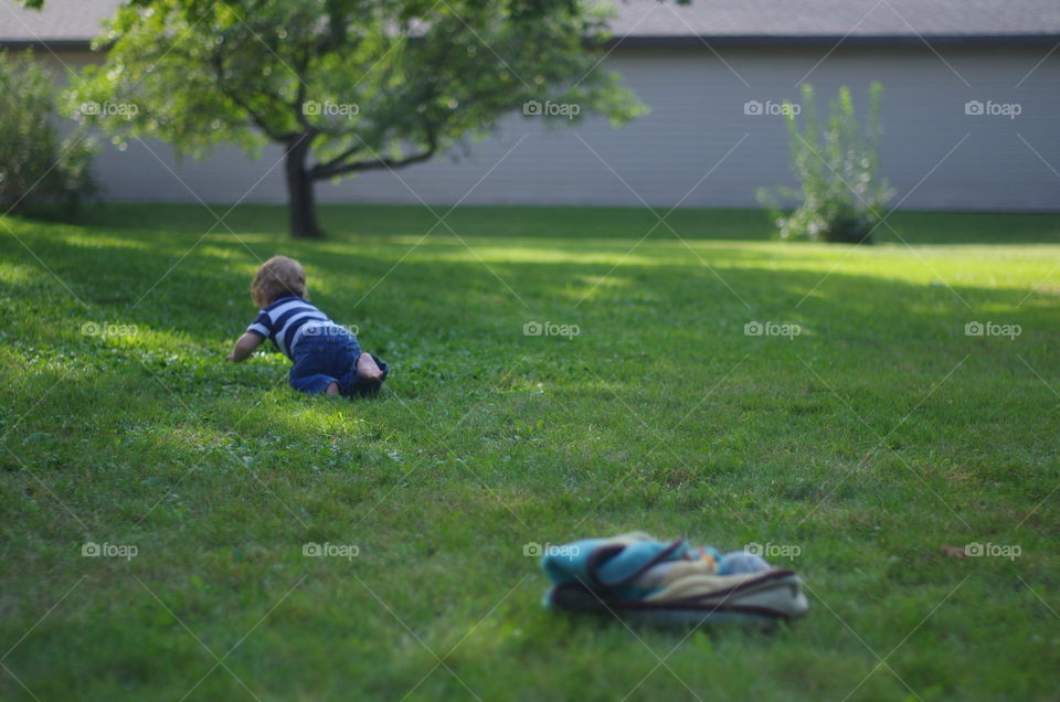 Grass, Park, Landscape, Lawn, Leisure