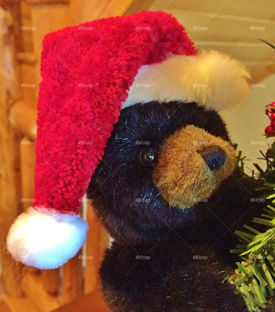 Stuffed Bear wearing Santa Hat