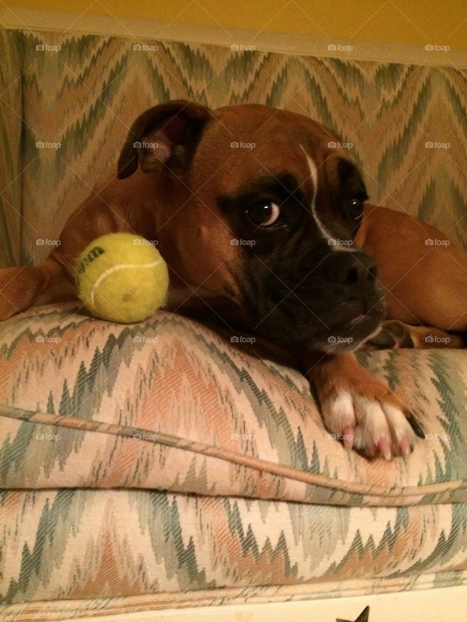 what ball?