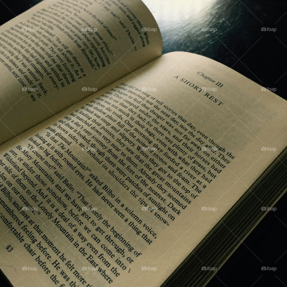 A short rest. A chapter from The Hobbit