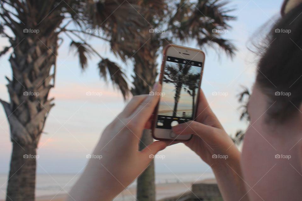 Palm tree memories