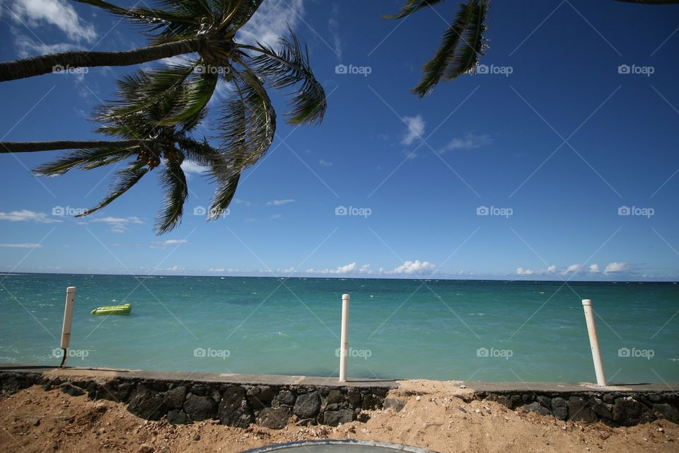 Looking at the Ocean. Palm trees sway as a raft beckons in aquamarine water. Puffs of clouds hang close to the horizon. A very peaceful place.