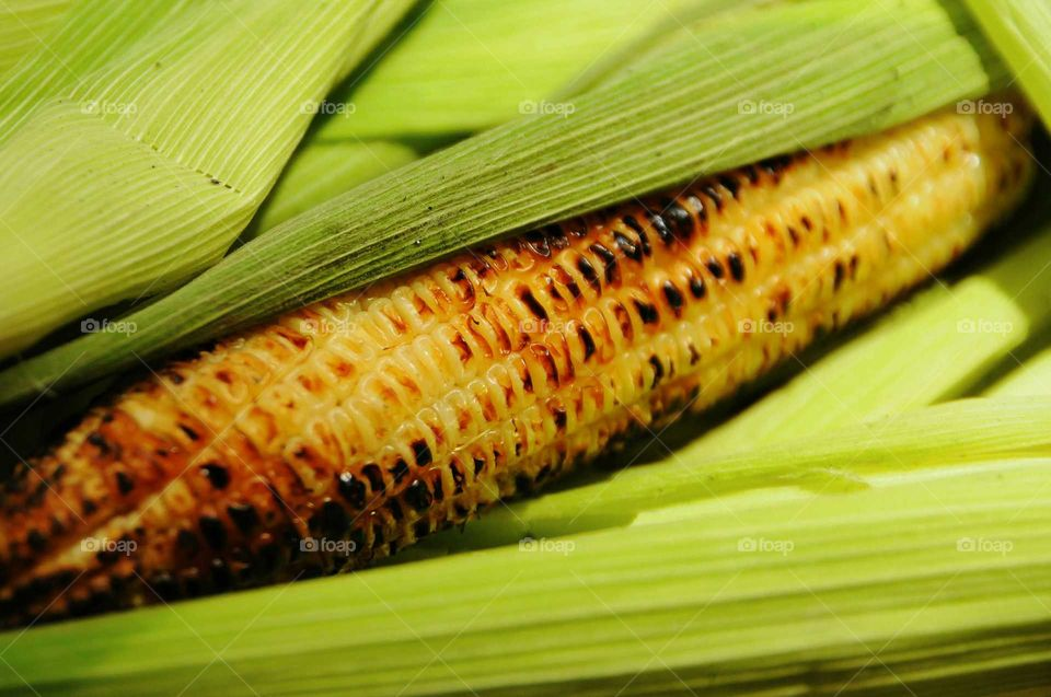 Close-up of grilled corn on the cob