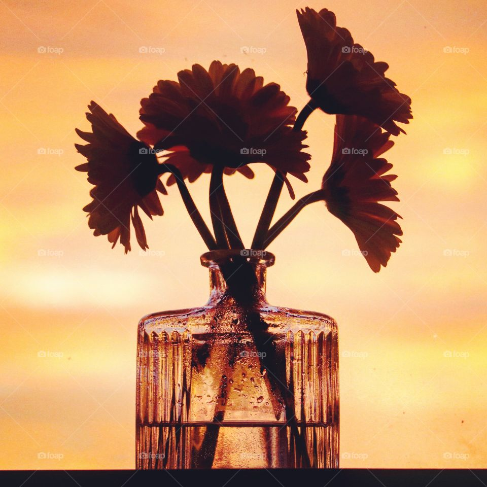flowers in glass container at sunrise