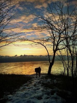 Early Sunday Sunrise in Wisconsin