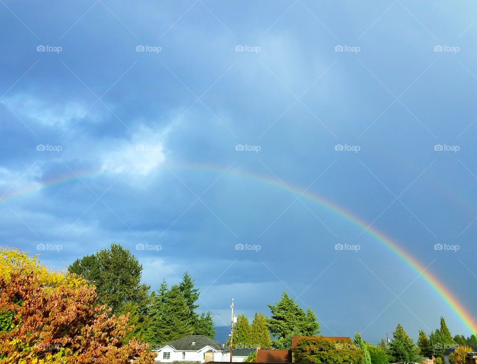 A colorful rainbow visible after a storm over a neighborhood area.