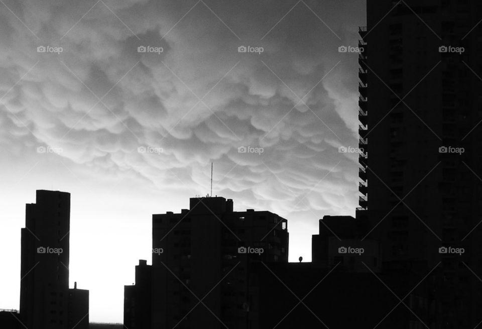city white black building by liondb1