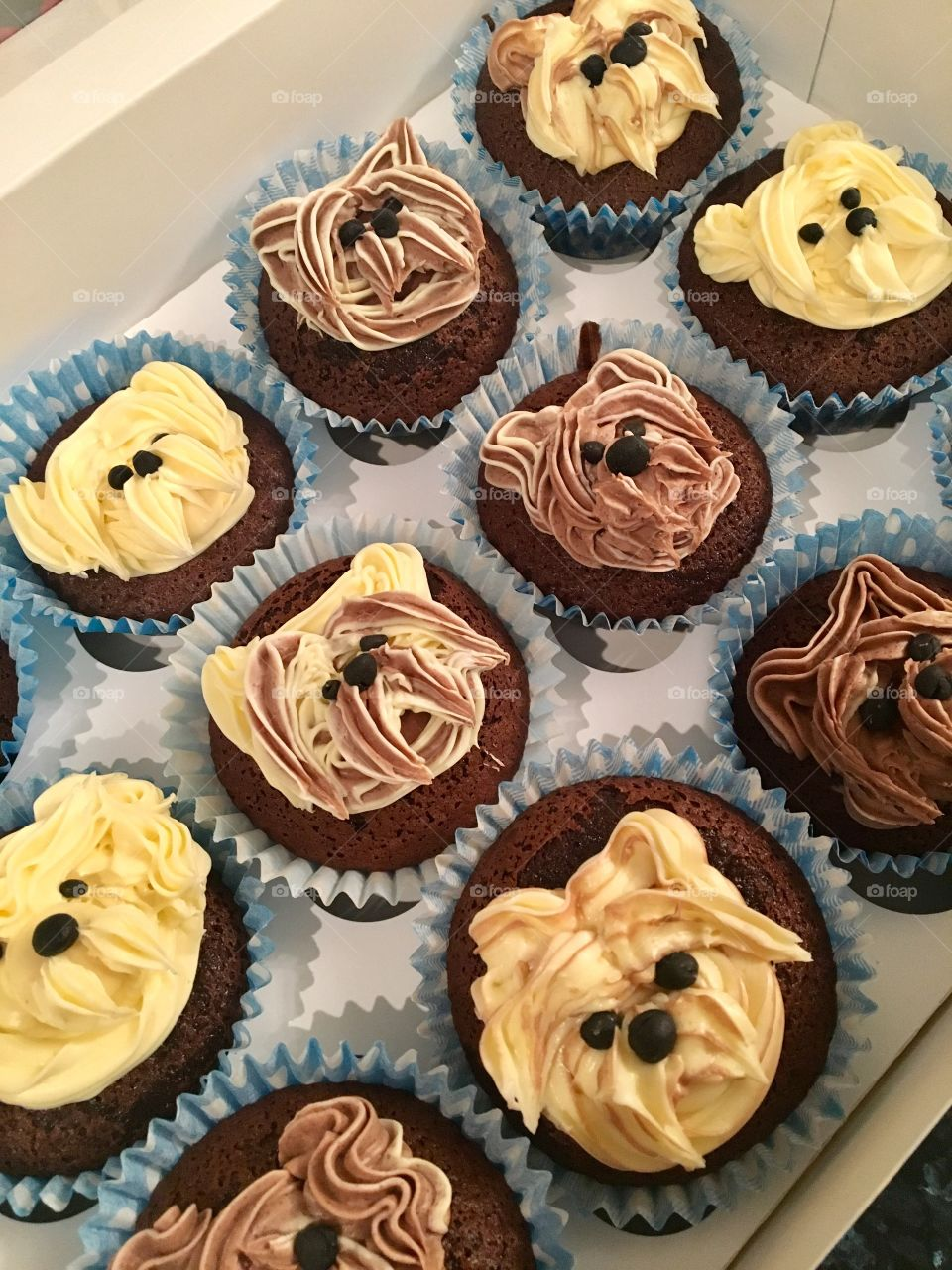 Doggy cupcakes- made by me
