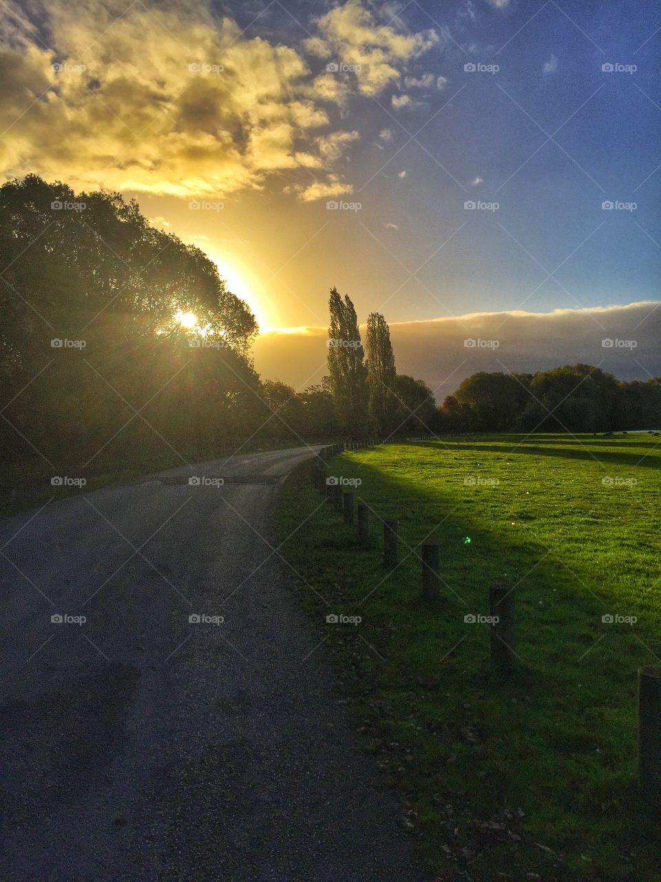 Scenic view of rural sunrise