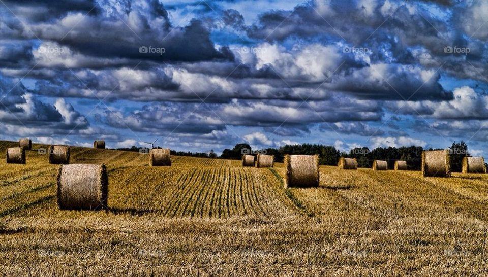 landscape sky green nature by cekari