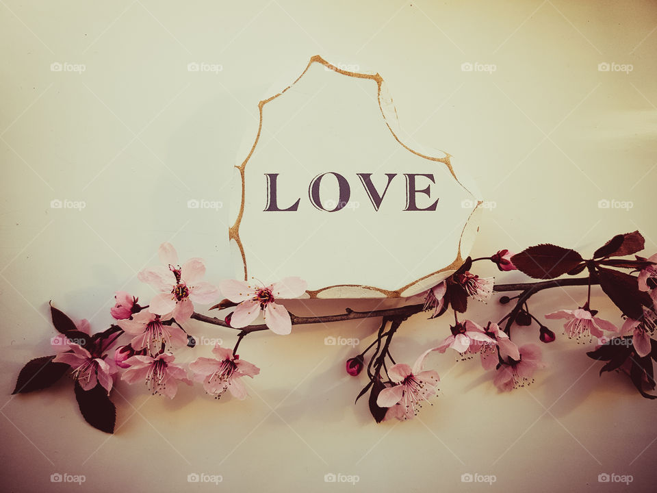 white wooden heart with the word LOVE wrote on it. Pink blossom tree flowers on white background.