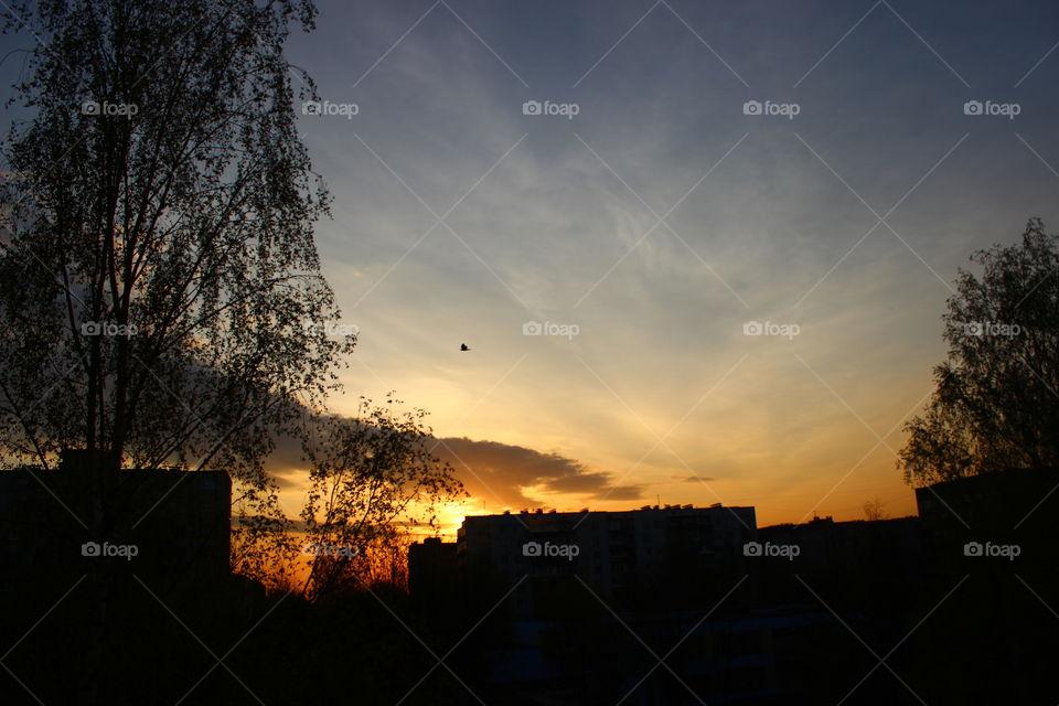 sunset blue vs orange light