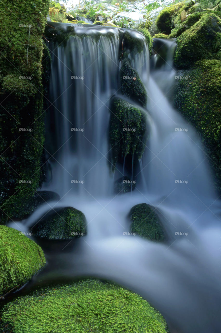 Waterfall and rocks covered with moss