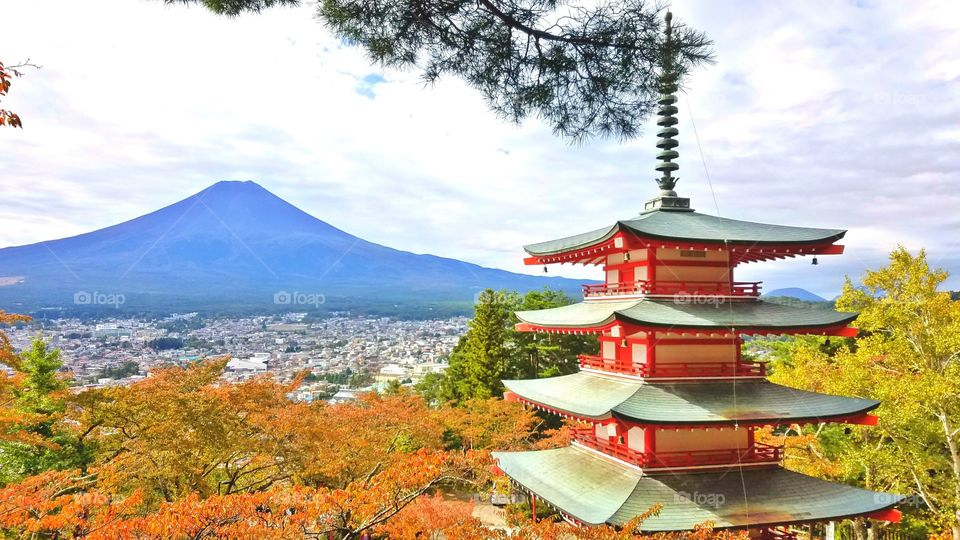 Beautiful mount Fuji in the fall
