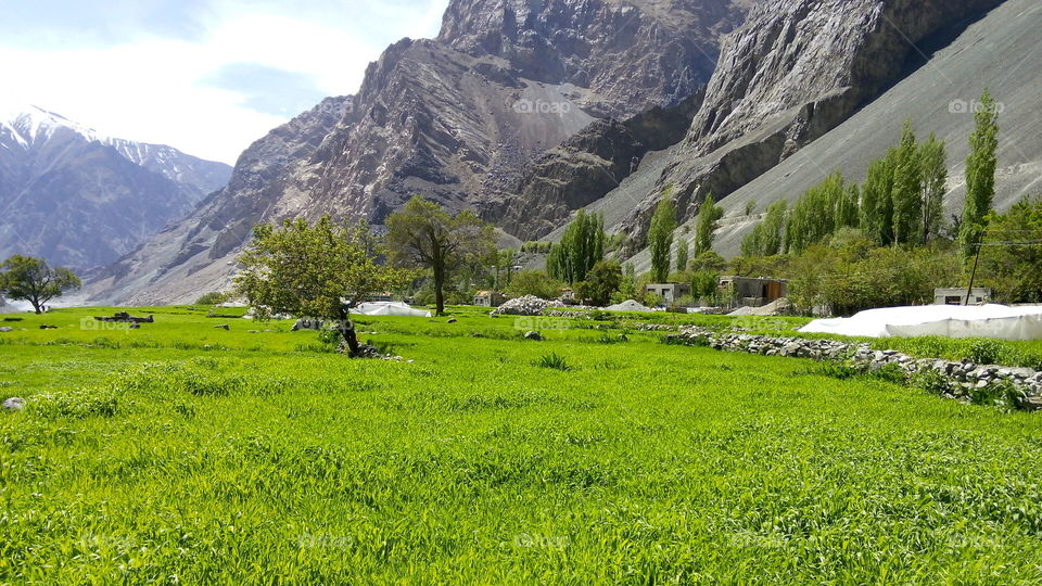 A beautiful scene of a village in Leh Laddakh called Bongdang Located in state of India Kashmir. That's why it's called heaven on earth.