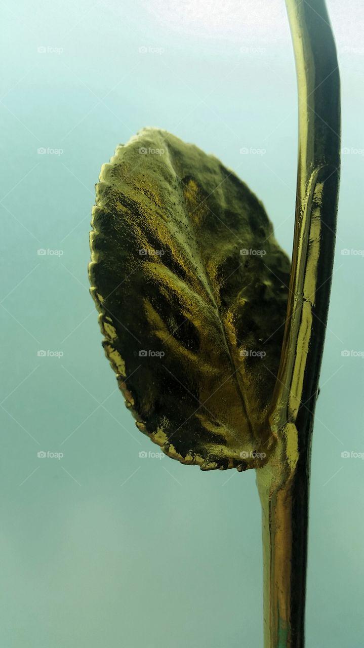 golden leaf. art of preservation