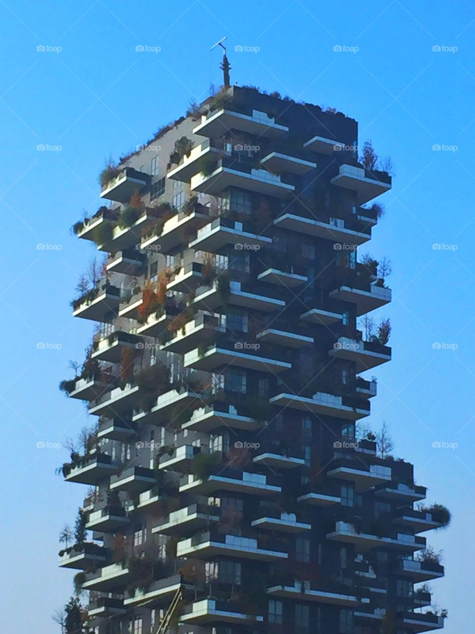 Big and tall residential building in Milan,Italy