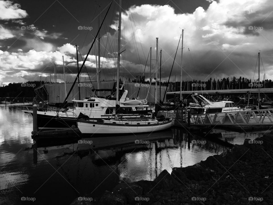 Sail Boats in Port