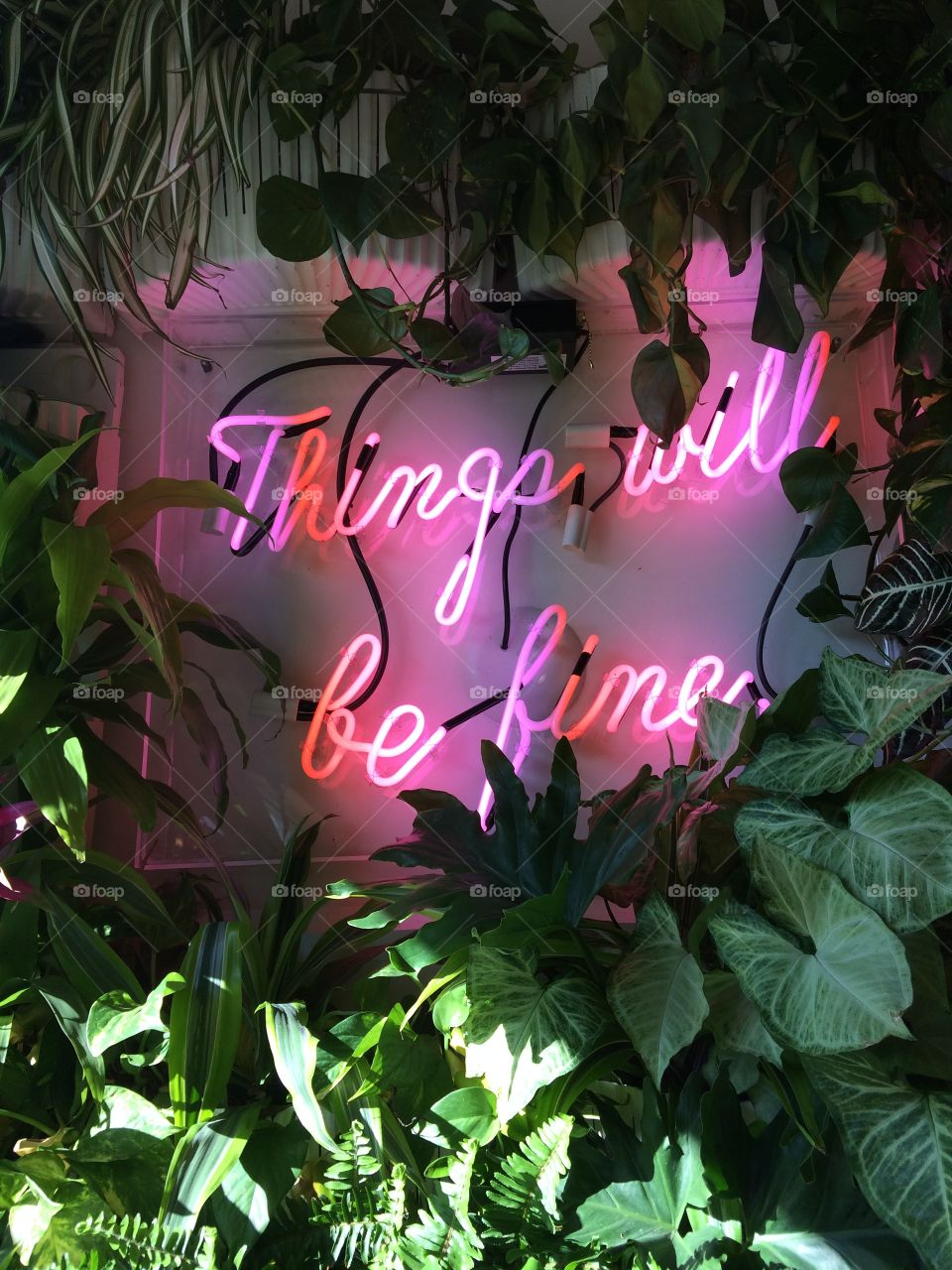 Things will be fine.