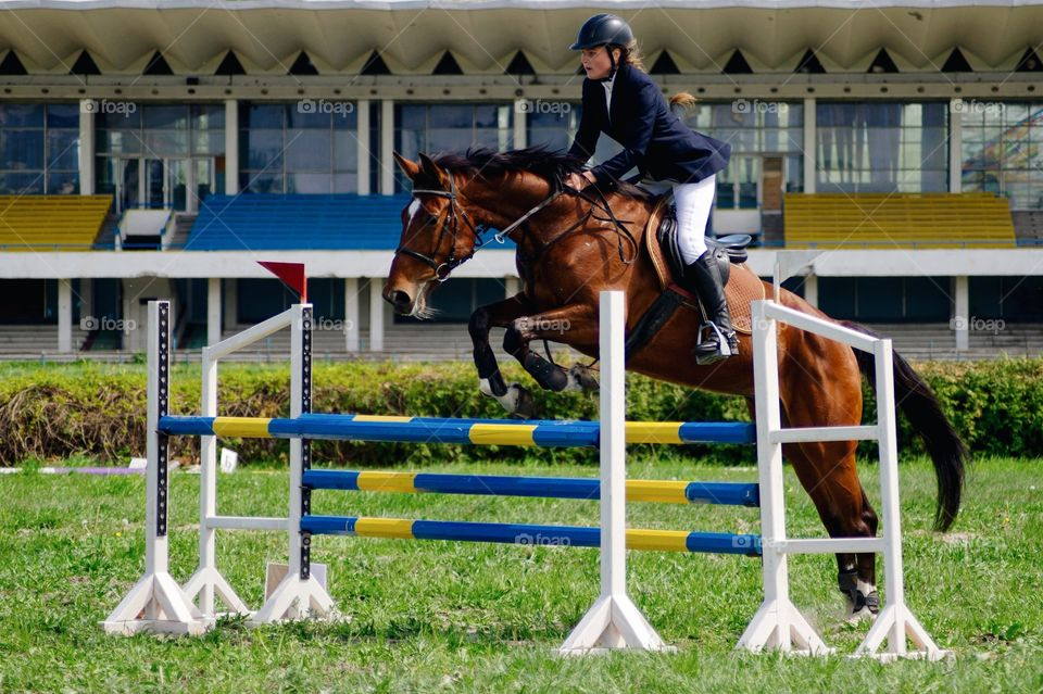 Male horse rider jumping over hurdle