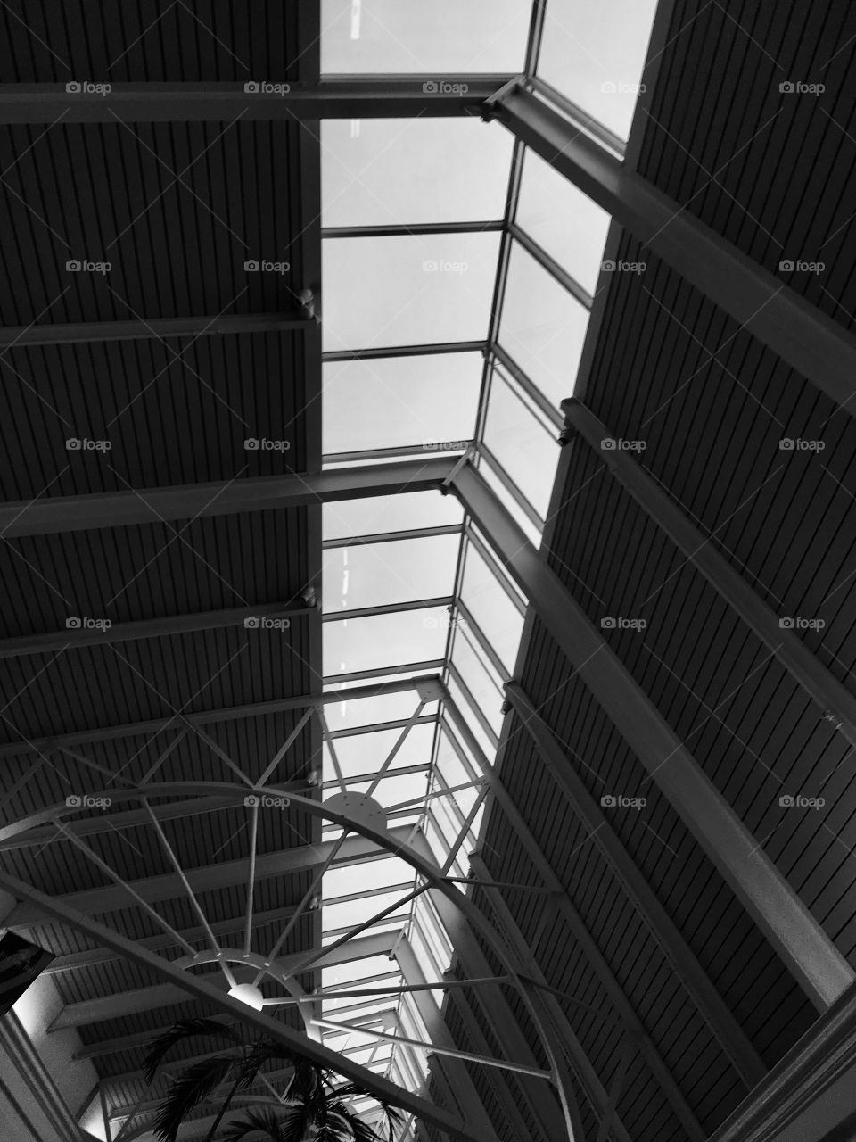 Awesome skylight at the mall