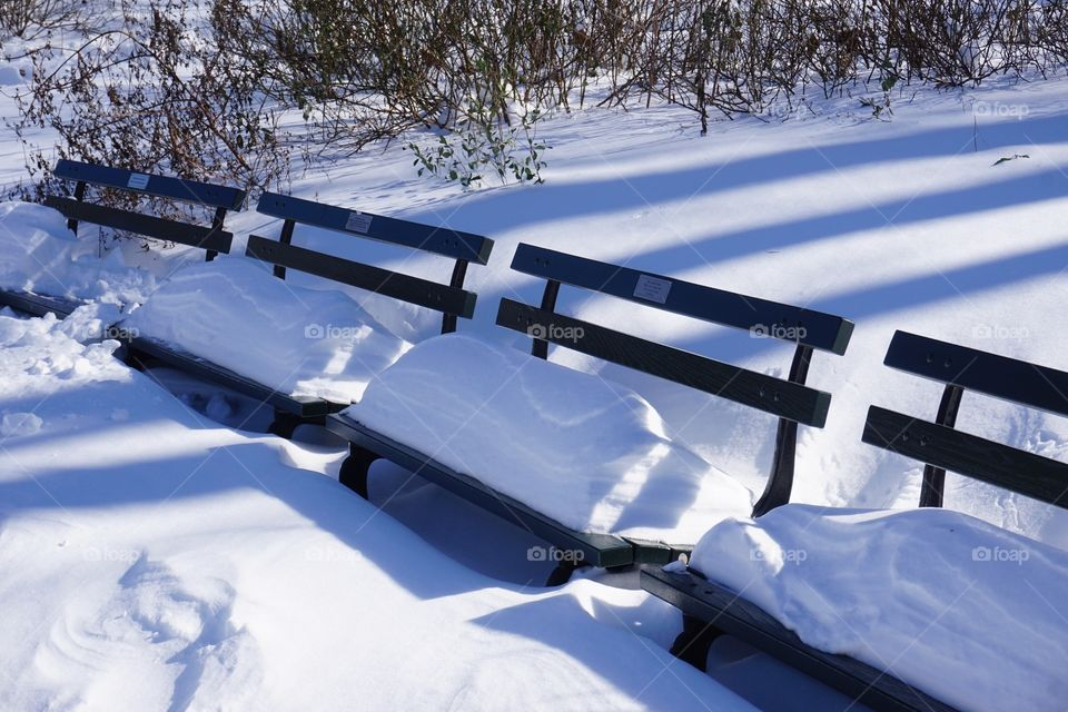 Empty benches covered with snow
