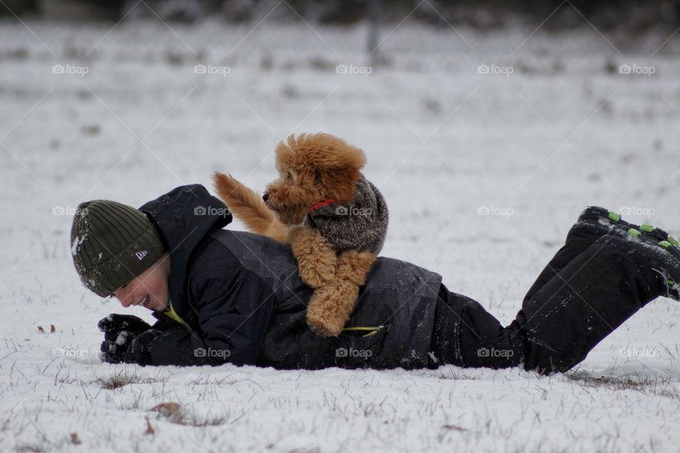 pedigree pets