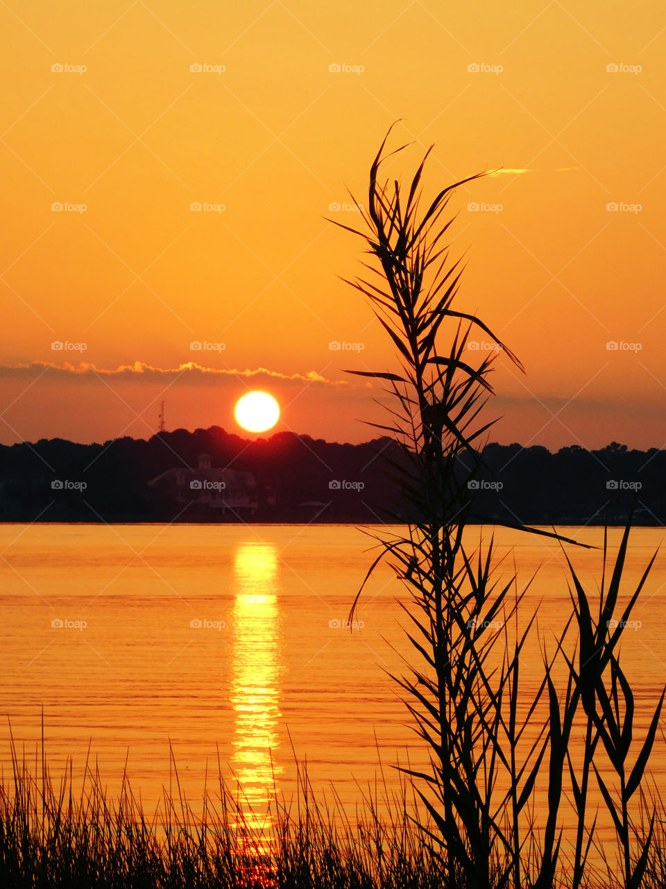 Scenic view lake during sunset