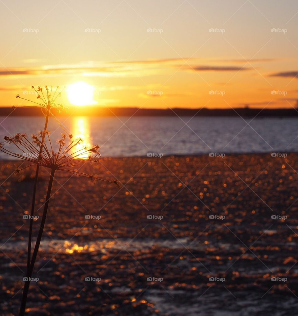 Beautiful evening sky. Sunset colors in the sky and icy lake. Hay in front of the view.