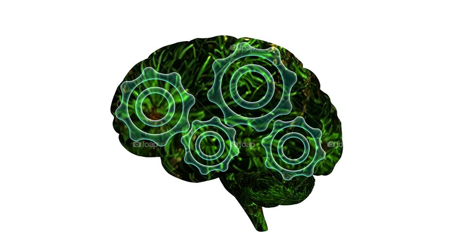 brain with plant texture and green gearls mechanism