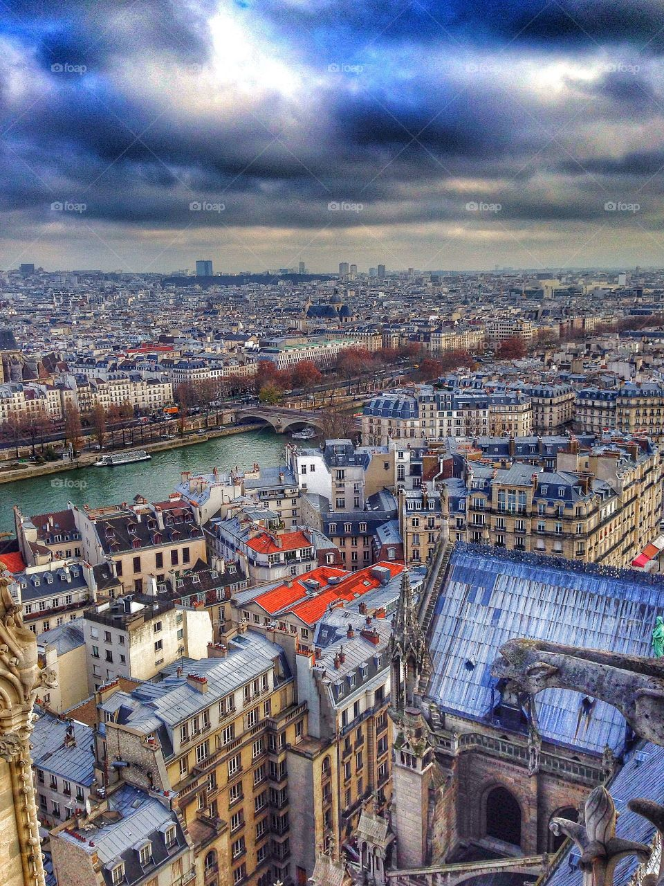 Paris, France from the Notre-Dame