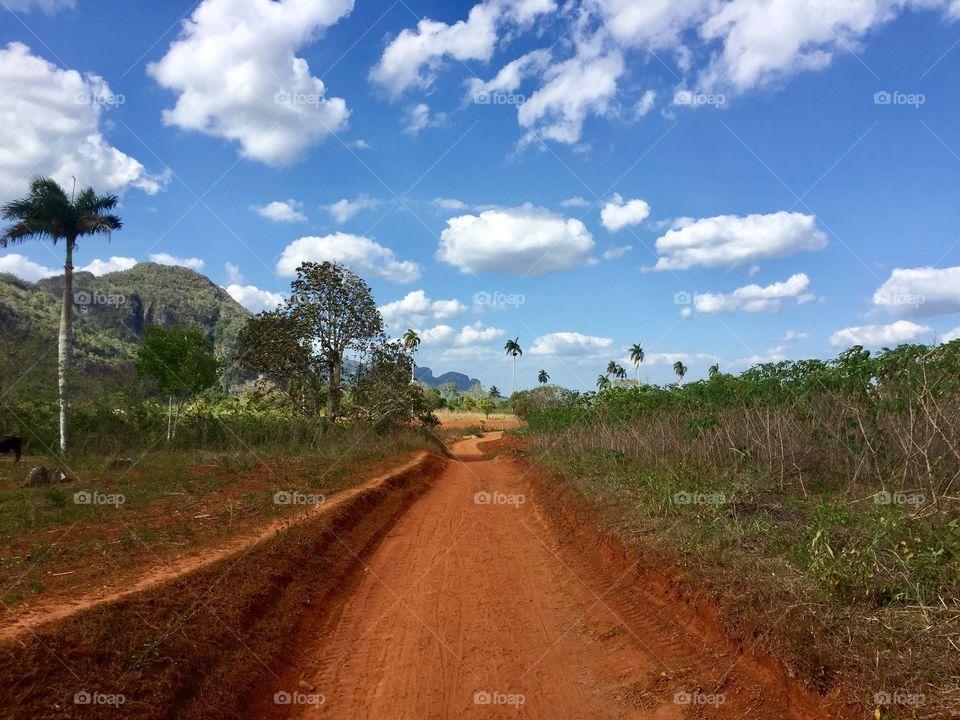 Red road beside field